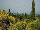 BUILDING LAND SOUTH CORFU GREECE