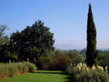 Villa For Sale in Fucecchio Province of Florence Italy