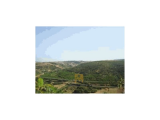 Novelty-Rustic Land 258063, 00m ²-Property of Banco