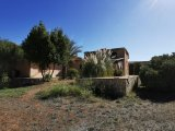 Rural house with large garden for sale in Binissalem Mallorca