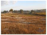 Land with 78.000sqm that can be urbanised,in Caldas da rainha.