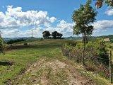 Farm estate for sale in Umbria - Il Faggeto