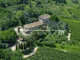 Beautiful country estate with vineyard and olive grove for sale on the Pisan hills, Tuscany