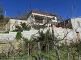 3 bed villa with vineyard and land for sale