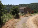 Large two bed Renovation project with vineyard and land