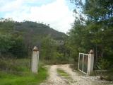 Land For Sale in Monchique Algarve Portugal