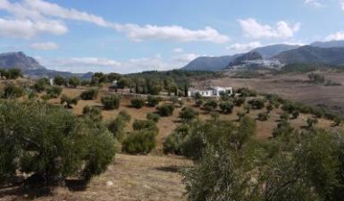 country house For Sale in Algodonales Cadiz Spain